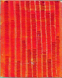 radical warp 5 orange drawing by stella untalan