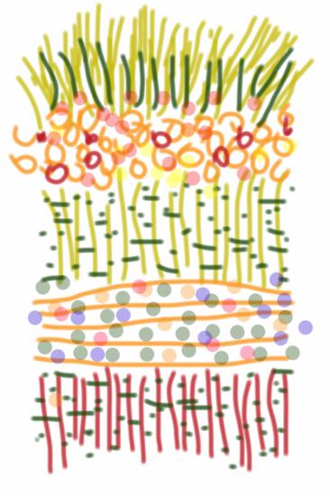 05012012 drawing by Stella Untalan
